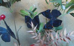 Anaea basilia