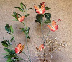 Phoebis philea huebneri