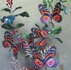 Papilio zagreus